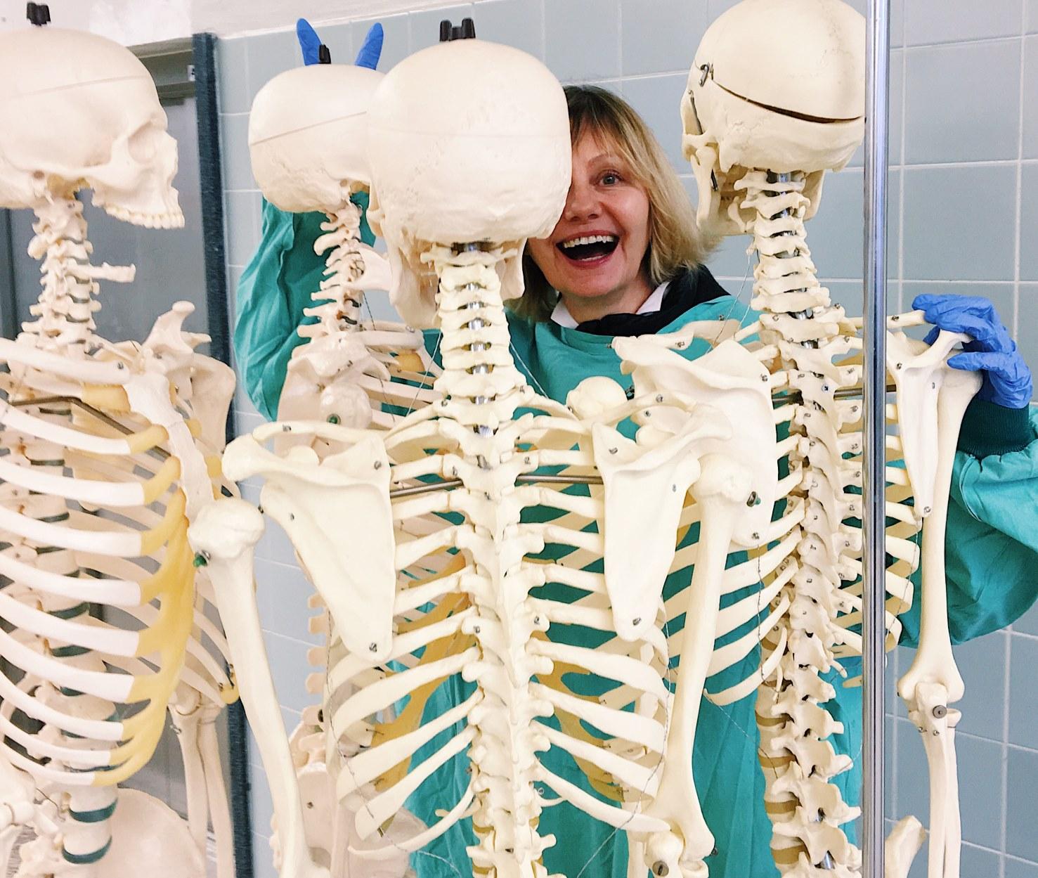Schau Skelette für Studenten