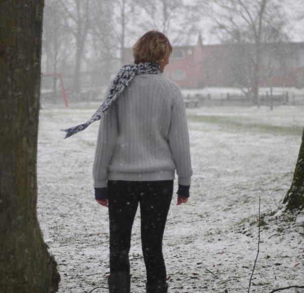 schneefall auf der krokuswiese