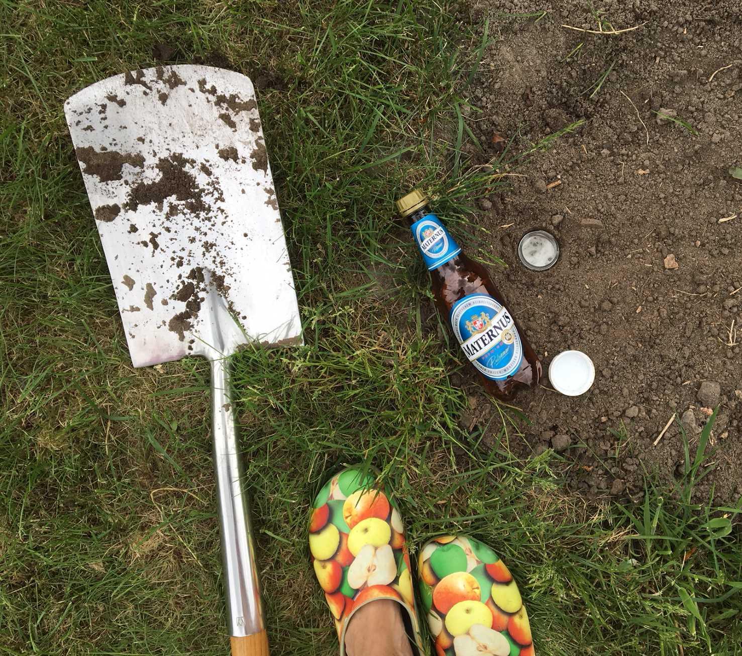 Bier in Falle für Schnecken