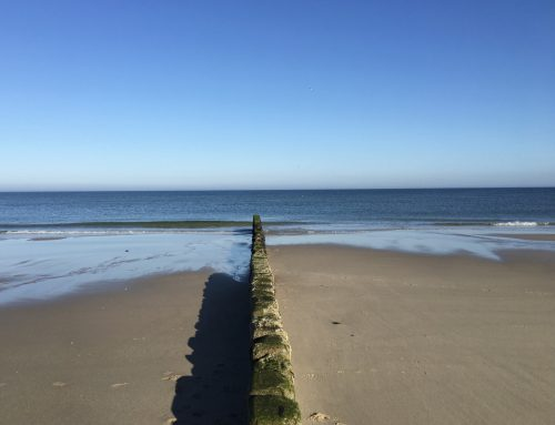 Reisetipps von der Ostsee an die Nordsee
