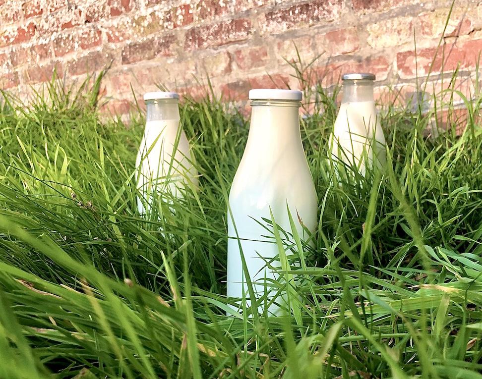 Milch, Kuhmilch, Rohmilch, Milchflaschen